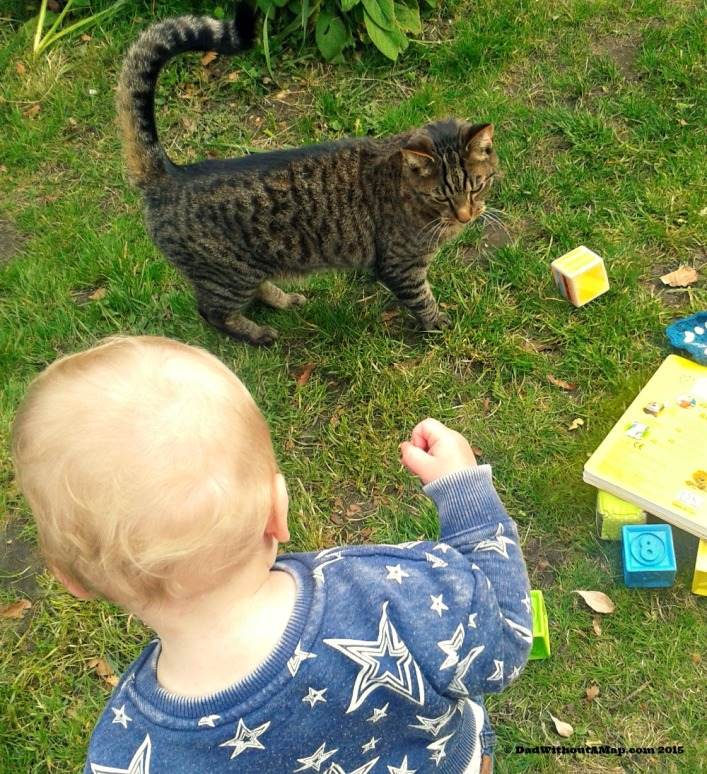 Baby and cat in garden